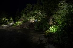 071417_DiMarcoLighting_111