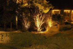pb2007-DiMarco light762