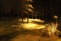 pb2007-DiMarco light764